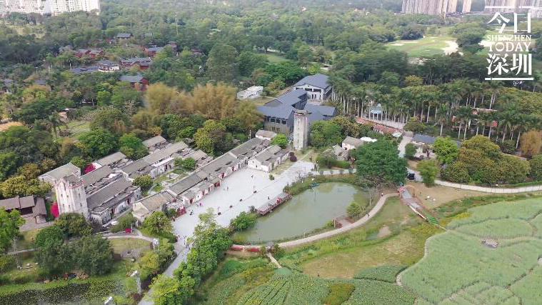 今日深圳3月19日:观澜版画村,城市的文化灵魂