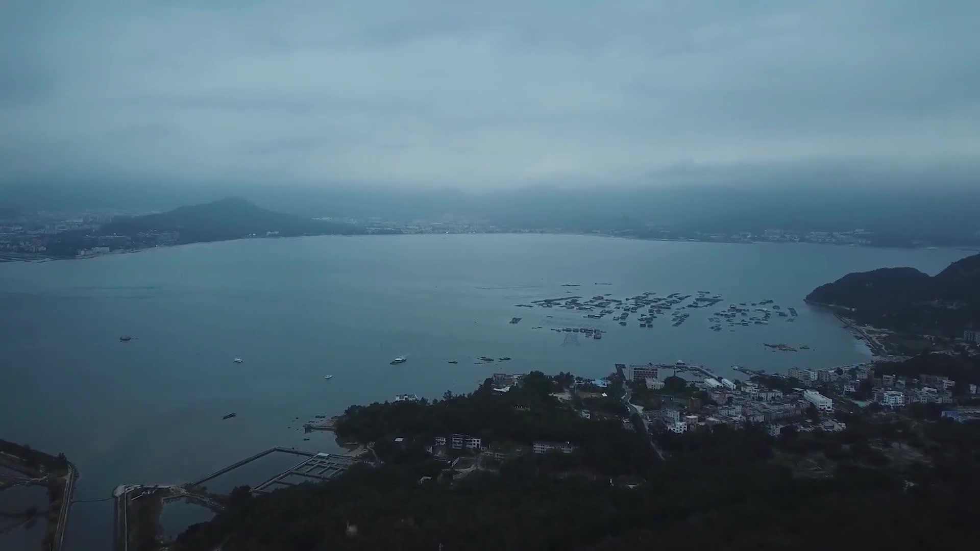 深圳的绿道——碧长碧长碧长!