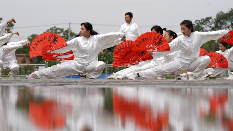 河北邢台:太极扇进校园