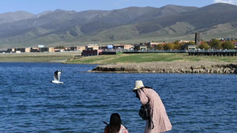 高原明珠——青海湖