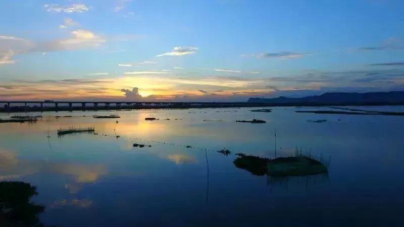 惠州淡水河、潼湖水将开展生态修复