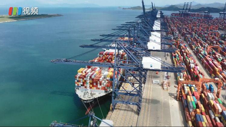 IN视频 20个泊位全部恢复作业 盐田港全面恢复整体操作