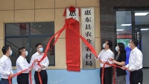 """惠东县乡村振兴局成立!14个乡镇(街道)加挂""""乡村振兴办公室"""""""