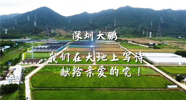 深圳大鹏:我们在大地上写诗,献给亲爱的党