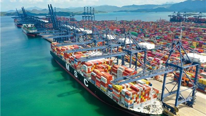 日吞吐量近4万标箱 盐田国际20个泊位已全部恢复作业