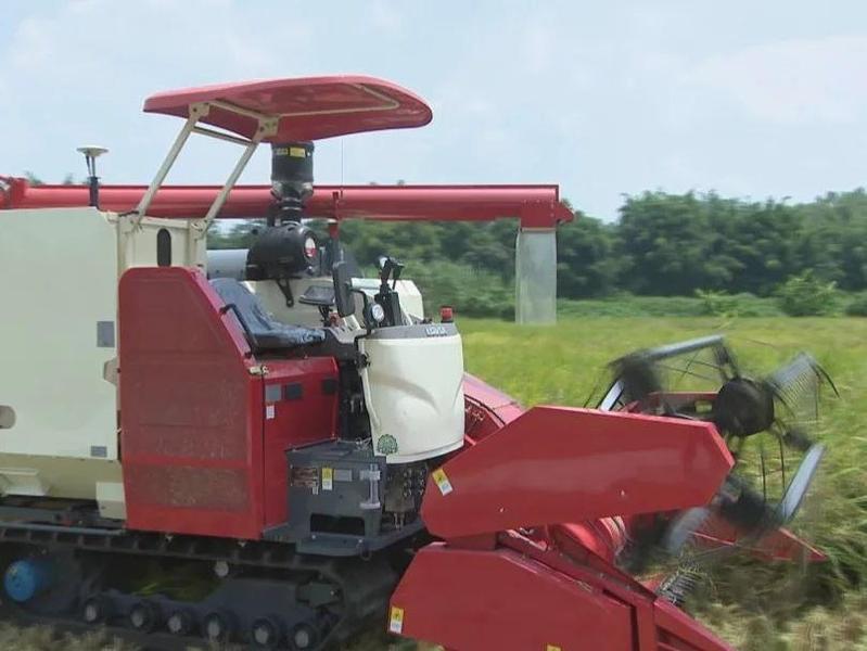 广东首台无人水稻收获机在佛山下田了!