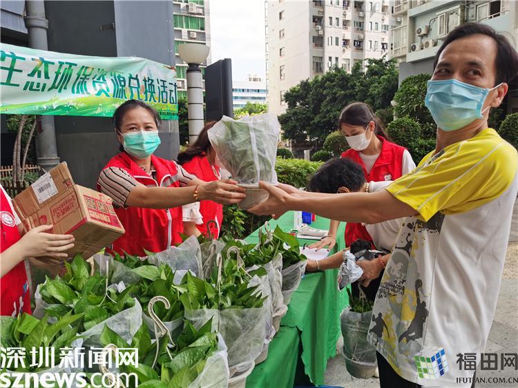 """给生活添点""""绿""""!来莲花街道用生活垃圾兑换绿植"""