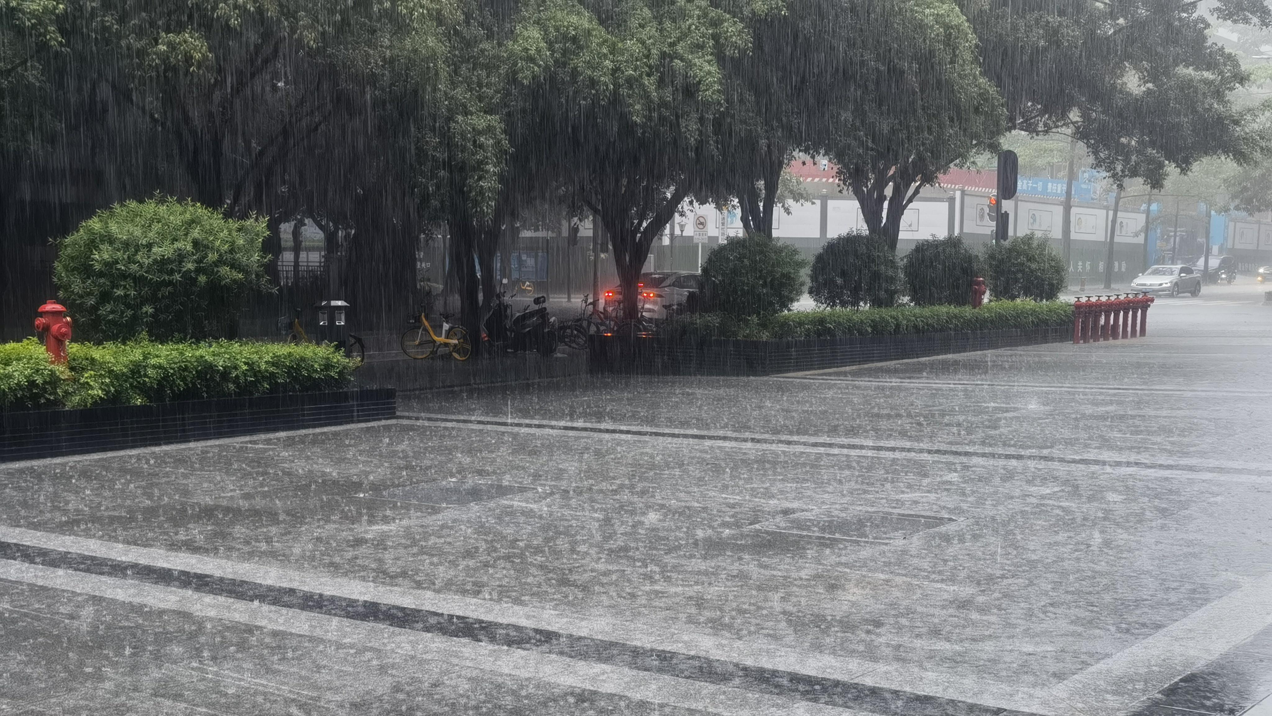 慢直播回顾:深圳市解除暴雨黄色预警和雷电预警