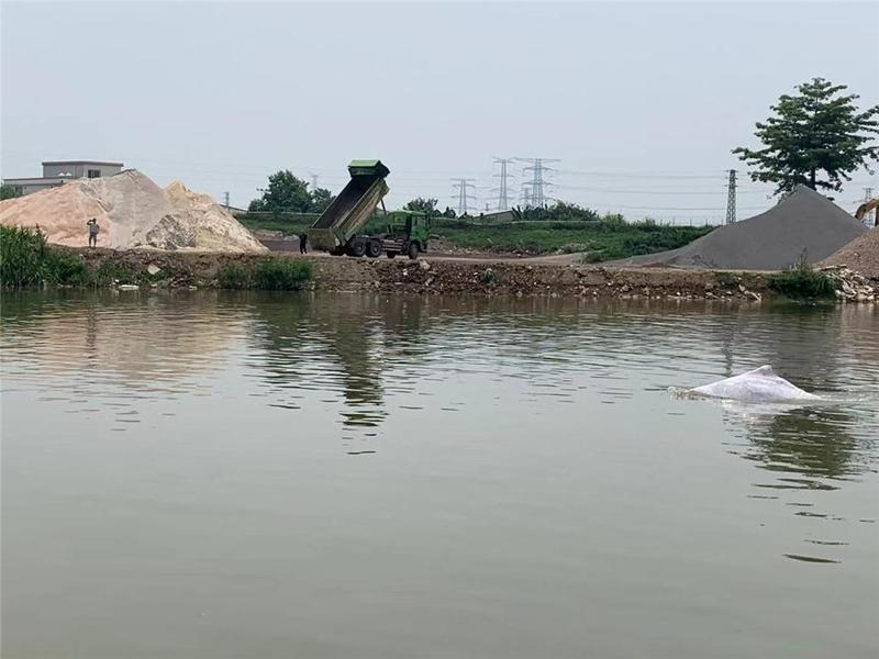 佛山又见白海豚!渔政部门:老年中华白海豚误入内河,声呐系统出现问题