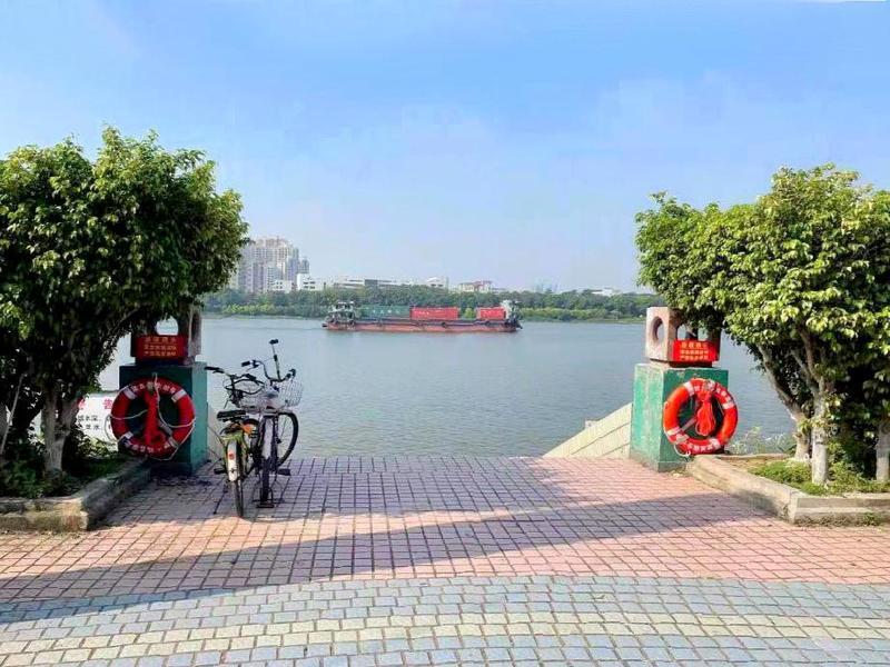 防溺水!东莞市石龙镇在河岸增设救生设备