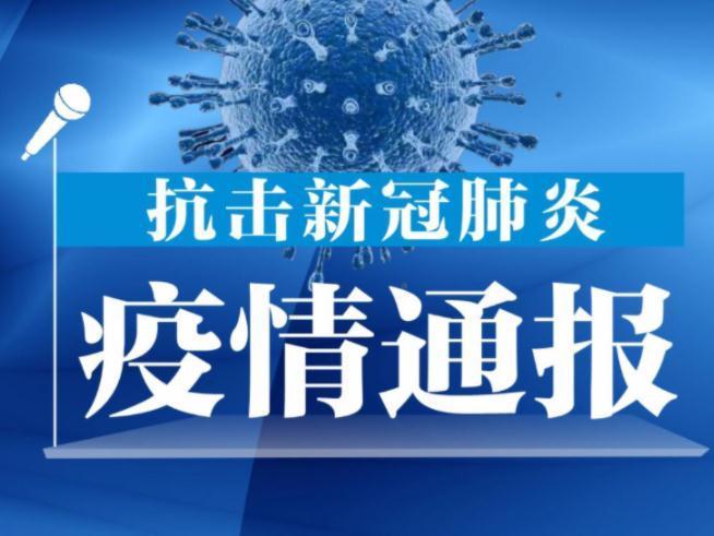 香港新增1宗输入新冠肺炎确诊个案