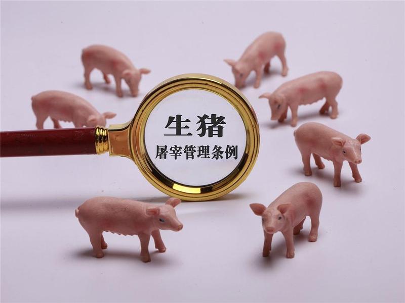 关注!新修订《生猪屠宰管理条例》8月1日施行