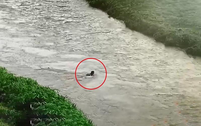 深圳男童在滩涂玩耍因涨水被困 辅警奋不顾身冒险救人