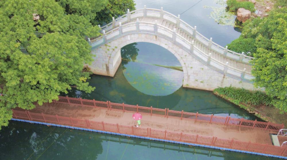 IN视频 今日深圳8月3日:荔枝公园,一场雨从天而降