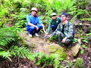 惠州市林业工程师林翔飞:与林为伴,毕生巡山护林