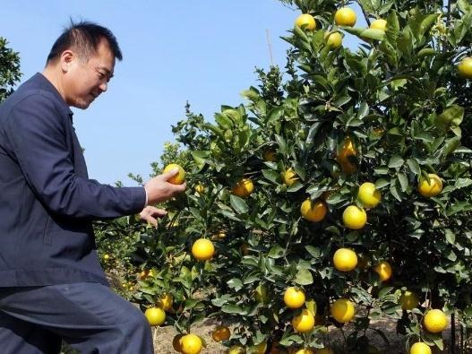 新增27家农企!珠海最新人才引进入户重点企业目录发布