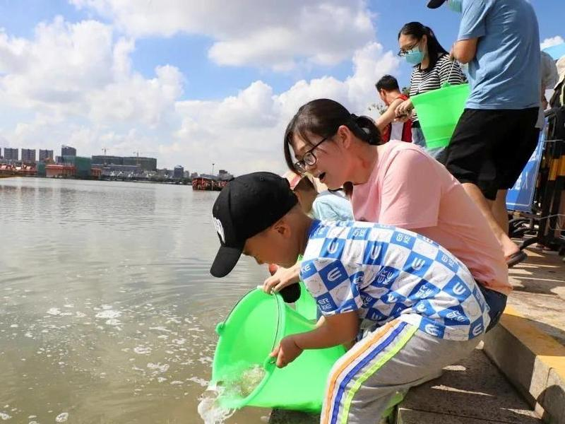 """增殖放流护生态!220万尾鱼苗""""安家""""东莞市华阳湖"""