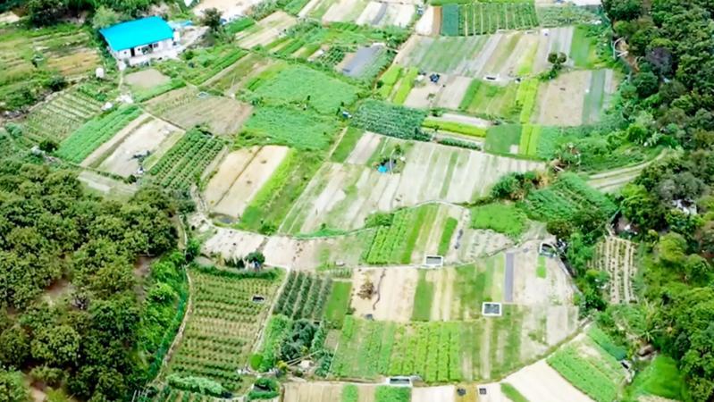 广深将加快打造国际种业硅谷 支持深圳打造农业科技创新先行示范区