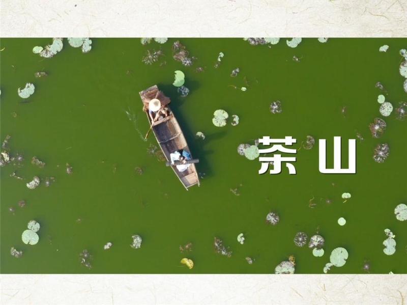赏心悦目!东莞市茶山镇文旅宣传片发布