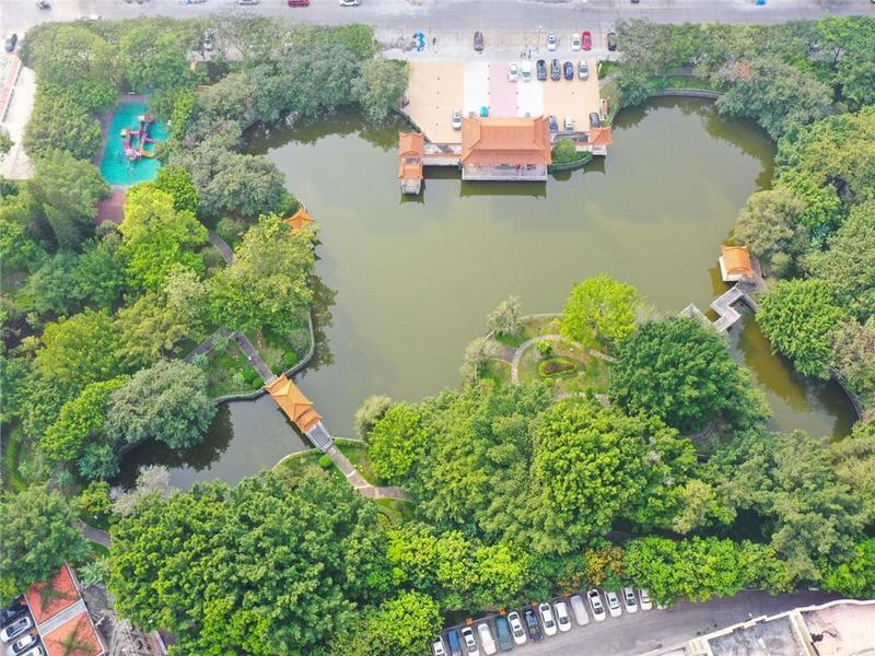 更美了!东莞市长安镇打造家门口风景线