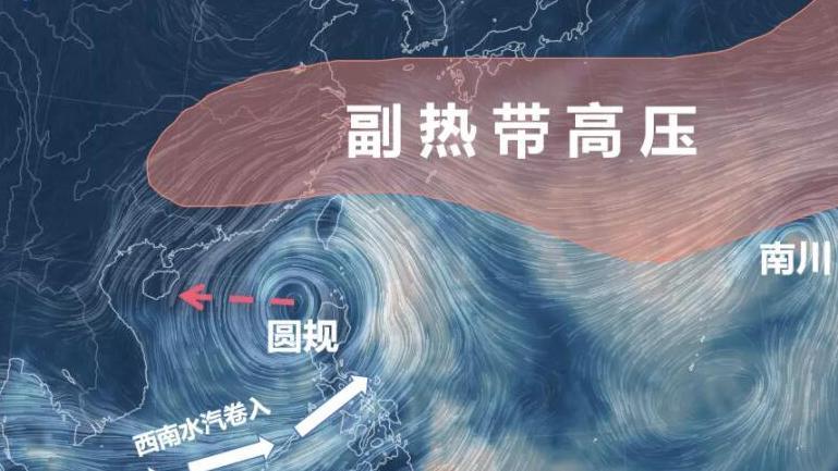 做好防风准备!深圳市台风白色预警升级为蓝色,强风雨将开启