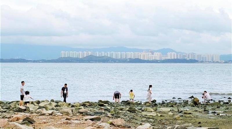深圳市民对深港合作充满期待 享受同城红利 体验同城幸福