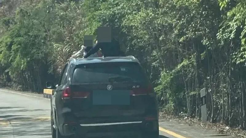 """车顶惊现两个孩子,还有一名家长在拍照?千万别这样""""晒娃"""",不仅危险还将被罚!"""
