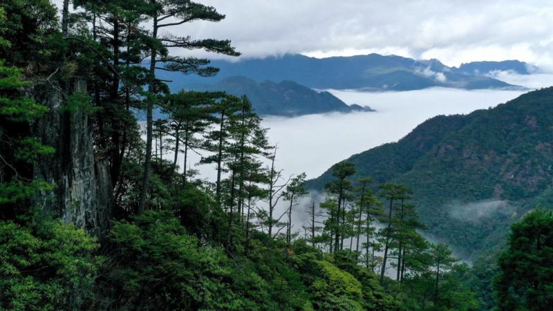 第一批国家公园名单公布 三江源国家公园等入选