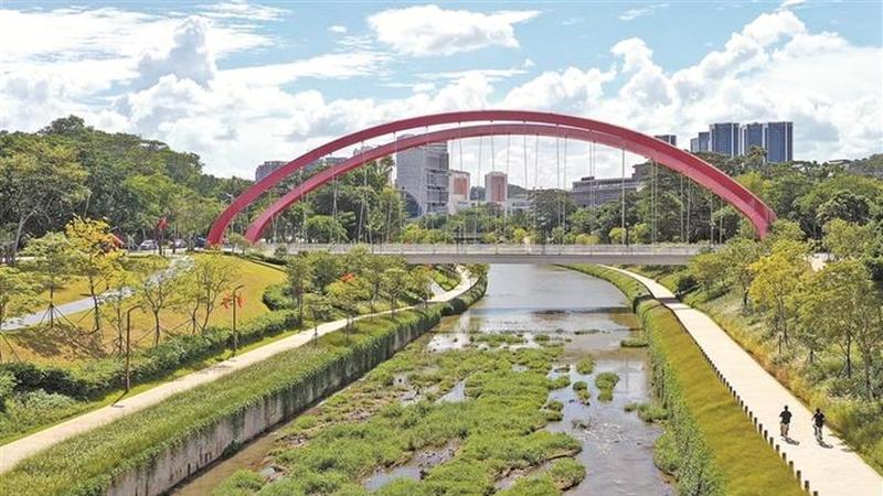 绿色引擎已成深圳经济社会高质量发展新动能 水清岸绿鱼翔鸟栖绘美景